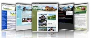 diseño eficiente de pagina web